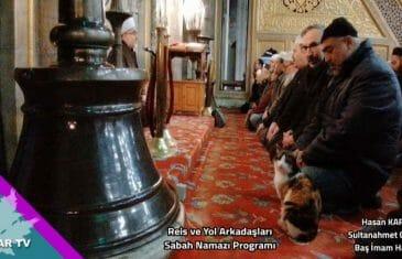 Saflarımızda Saf Bir Kedi Sultan Ahmet Camii Sabah Namazında