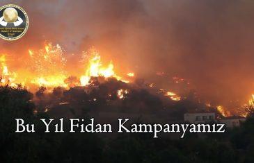 Bu Köy Ya Senin Ya Benim   Orman Yangınları